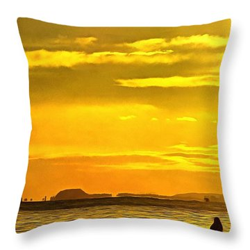 Spanish Marine Sunset Throw Pillow by Mick Flynn