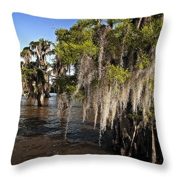 Spanish Moss Throw Pillow by Andy Crawford