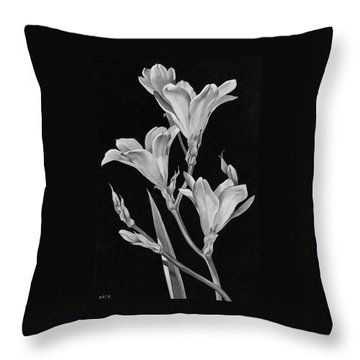 Sparaxis Flowers Throw Pillow