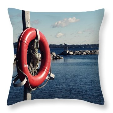 Throw Pillow featuring the photograph Spare by Zinvolle Art
