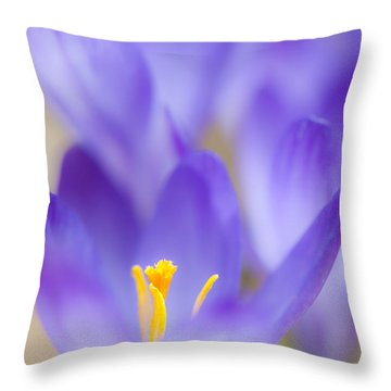 Spark Of Spring Throw Pillow
