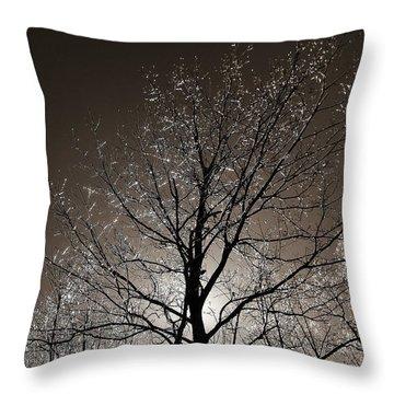 Sparkling Branches Throw Pillow by Kathi Mirto