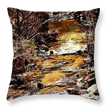 Throw Pillow featuring the photograph Sparkling Creek by Tara Potts