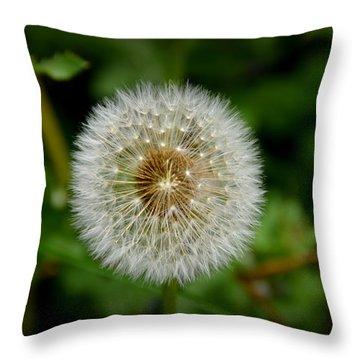 Sparkling Dandelion Throw Pillow by Debra Martz