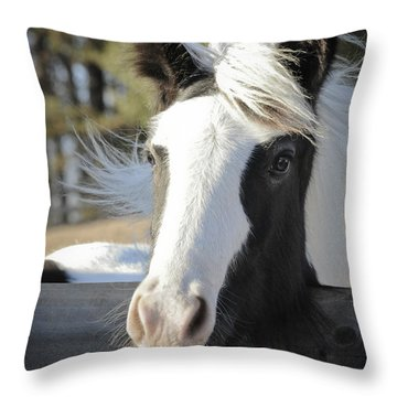 Sparkling Emma Throw Pillow