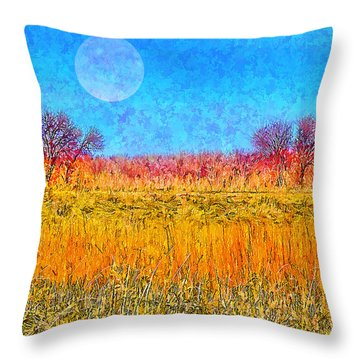Throw Pillow featuring the digital art Moonlight Over Fields Of Gold - Boulder County Colorado by Joel Bruce Wallach