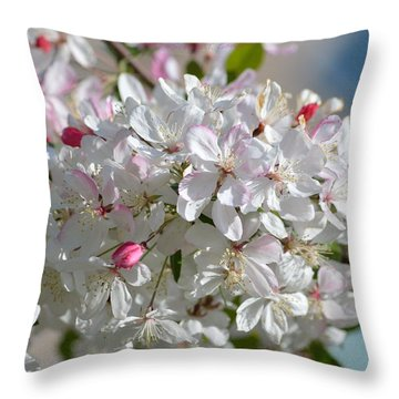 Sparkling Pearls Throw Pillow by Sonali Gangane