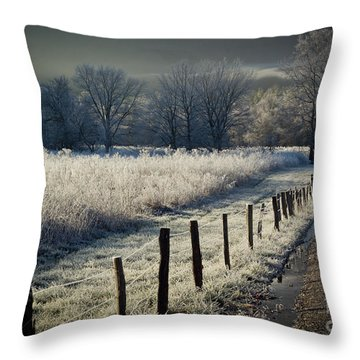 Sparks Lane December 2011 Throw Pillow by Douglas Stucky