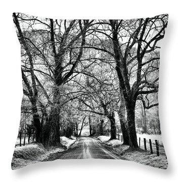 Sparks Lane During Winter Throw Pillow