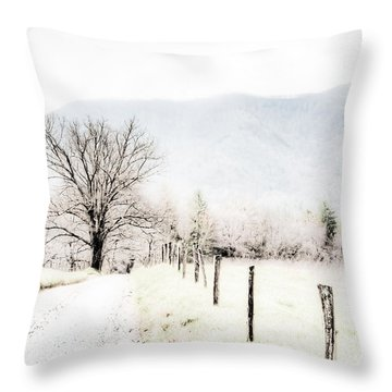 Sparks Lane Throw Pillow by Lynne Jenkins