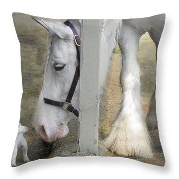 Sparky And Sterling Silvia Throw Pillow by Fran J Scott