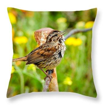Sparrow Throw Pillow by Donald Fink