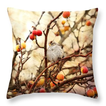 Sparrow In A Crab Apple Tree Throw Pillow by Peggy Collins