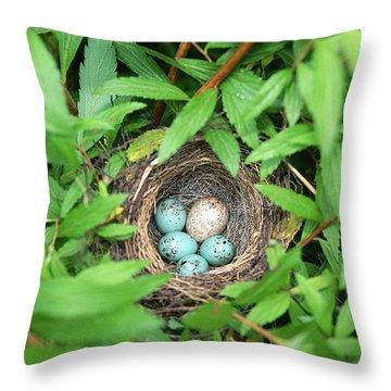 Sparrow Nest With A Cowbird Egg Throw Pillow