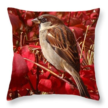 Sparrow Throw Pillow by Rona Black