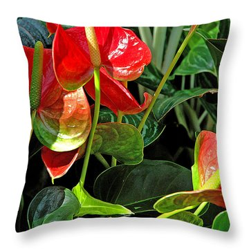 Throw Pillow featuring the photograph Spathiphyllum Flowers Peace Lily by A Gurmankin