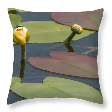 Spatterdock Heart Throw Pillow
