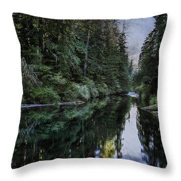 Spawning A River Throw Pillow