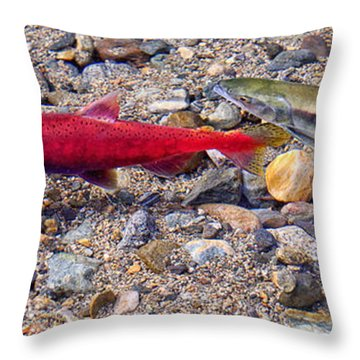 Throw Pillow featuring the photograph Spawning Pair by Jim Thompson