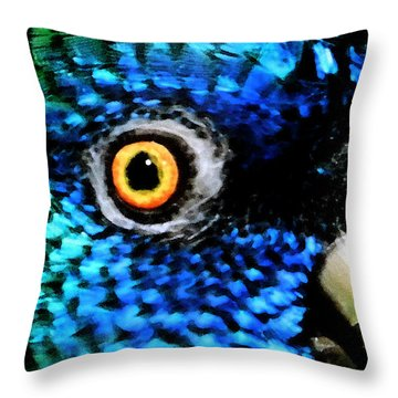 Speaking Eye  Throw Pillow