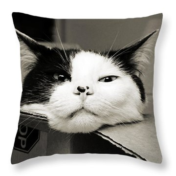 Special Delivery It's Pepper The Cat  Throw Pillow by Andee Design