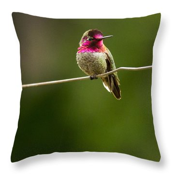 Speedy Slows Down Throw Pillow by Jean Noren