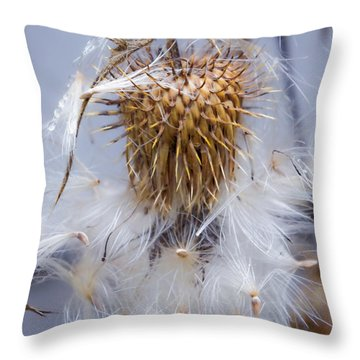 Spent Thistle Throw Pillow by Adria Trail