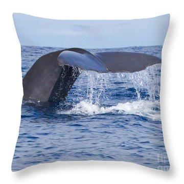 Sperm Whale Tail Throw Pillow