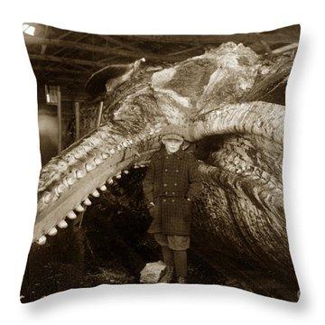 Sperm Whale Taken At Moss Landing California  On January 22 1919 Throw Pillow