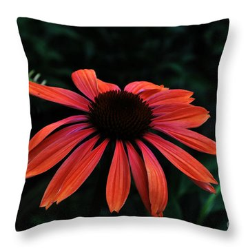 Spicy Throw Pillow by Judy Wolinsky