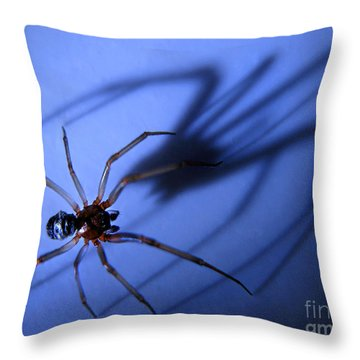 Spider Blue Throw Pillow by Jennie Breeze