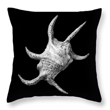 Spider Conch Seashell Throw Pillow