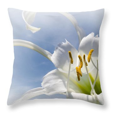 Spider Lily Throw Pillow by Jane McIlroy
