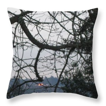 Spider Tree Throw Pillow by David Trotter