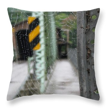 Spider Web Throw Pillow by Michael Krek