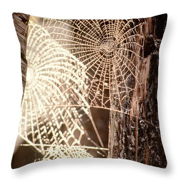 Spider Webs Throw Pillow by Anonymous