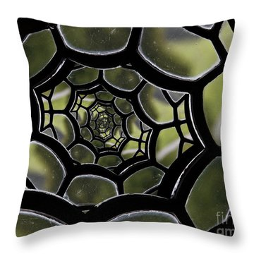 Spider's Web. Throw Pillow by Clare Bambers