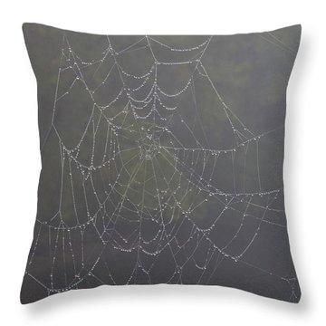 Spiderweb Throw Pillow by Allan Morrison