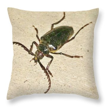 Throw Pillow featuring the photograph Spike by Angela J Wright