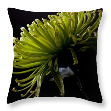 Throw Pillow featuring the photograph Spike by Sennie Pierson