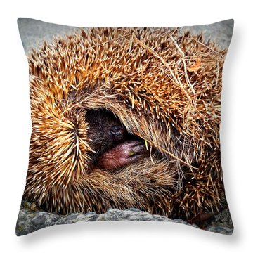Spiky Egg Throw Pillow