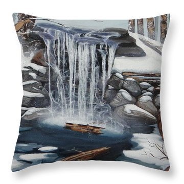 Sping Summer Fall Winter Throw Pillow