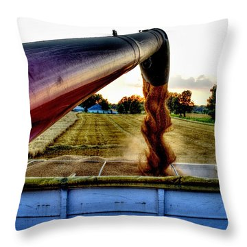 Spiral In Time Throw Pillow