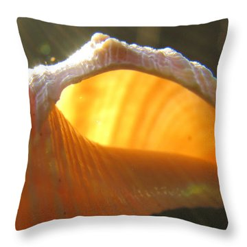 Spiral Light Throw Pillow