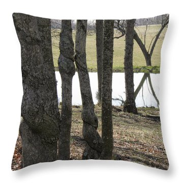 Throw Pillow featuring the photograph Spiral Trees by Nick Kirby