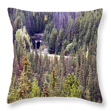Spiral Tunnels Throw Pillow