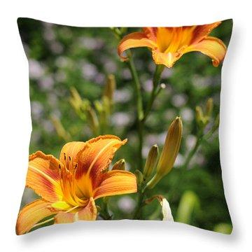 Spirit Of Summer Throw Pillow
