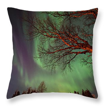 Spirits Of The Night    Throw Pillow
