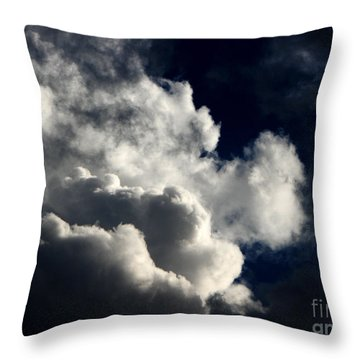 Spiritual Throw Pillow by Greg Patzer