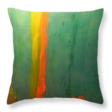 Splash Of Orange #1 Throw Pillow by Peggy Stokes